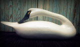 """ ANTIQUE PREENING SWAN """