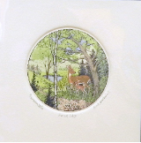 "SUSAN HUNT WULKOWITZ HAND TINTED ETCHING  "" FOREST EDGE """