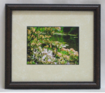 "KENNETH MURRAY PHOTOGRAPHY "" MOUNTAIN LAUREL - BAYS MTN "" SMALL FRAMED"