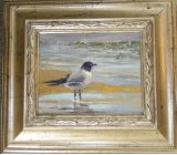 """LAUGHING GULL"" BY V. VAUGHAN FRAMED"