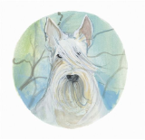 "P. BUCKLEY MOSS PRINT "" DOGS - WHITE SCOTTISH TERRIER """