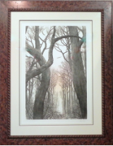 "FRANKLIN GALAMBOS FRAMED HAND TINTED ETCHING  "" WINDWARD CATHEDRAL """