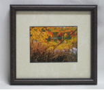 "KENNETH MURRAY PHOTOGRAPHY "" BAYS MOUNTAIN FALL "" SMALL FRAMED"