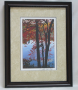 "KENNETH MURRAY PHOTOGRAPHY "" SOURWOOD TREES AT BAYS MOUNTAIN "" FRAMED"