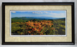"KENNETH MURRAY PHOTOGRAPHY "" FLAME AZALEA - ROAN MOUNTAIN PANORAMA "" FRAMED"