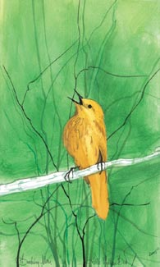 "P. BUCKLEY MOSS PRINT "" LITTLE YELLOW BIRD """