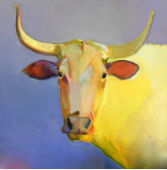 "BOB RANSLEY "" STEER ON BLUE """