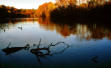 "KENNETH MURRAY PHOTOGRAPHY "" HOLSTON RIVER - KINGSPORT, TN "" 13"" x 19"""