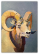 "BOB RANSLEY "" RAM ON BLUE """