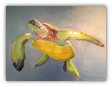 "BOB RANSLEY "" SEA TURTLE  ON BLUE """