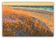 "LARRY SMITH "" BEACH WALK WITH GOLDEN GRASS "" ORIGINAL OIL ON CANVAS"